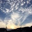 ⭐︎徳島の子供達の夏…