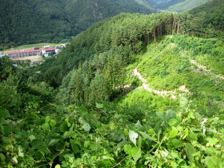 IMG_8400山道