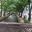 税理士京都。高瀬川の…