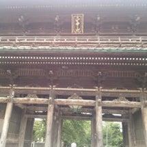 法華経寺の蓮の花