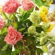 神田バラ園の薔薇をつ…