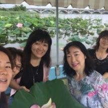 手賀沼蓮の花の舟