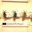 秋田県立博物館企画展…