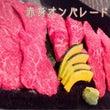 赤身のお肉はダイエッ…