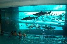 ラスベガスゴールデンナゲットホテルのプール