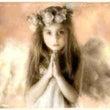 天使のメッセージカー…