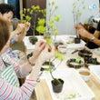 7月盆栽教室(上級編…