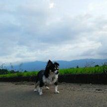 今日の原村から〜風ち…