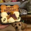 テオ1歳の誕生日、お…