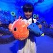 新江の島水族館(・ω…