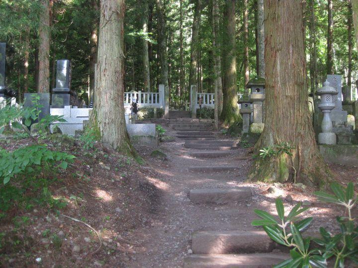 IMG_8414墓地
