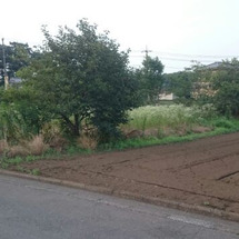 耕作放棄地、畑に戻し…