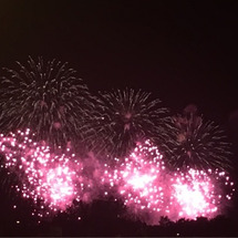 立川国営昭和記念公園…