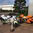 「オレンジ&ホワイト…
