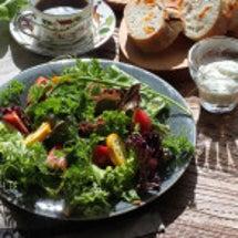 ガーデンサラダな朝♡
