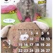 8月の俵太カレンダー