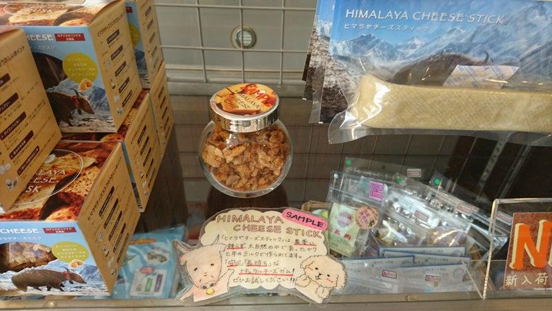 ヒマラヤチーズ2