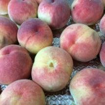 桃のメニュー。