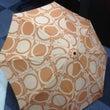 怪談ネタ、傘