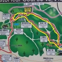 埼玉県飯能市の多峯主…