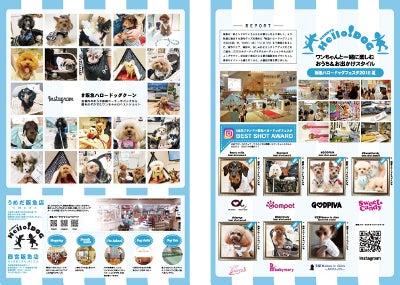 Cuun2016年8月号/阪急ハロードッグフェスタ
