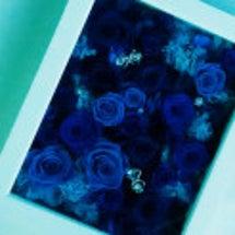 青いバラ(プリザーブ…