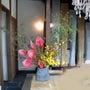 美容室りずむのお花