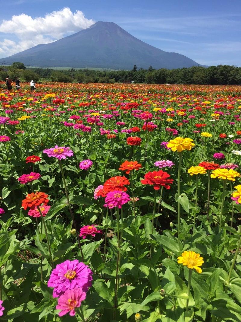 花の都公園2