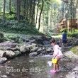 夏休みでキャンプ*