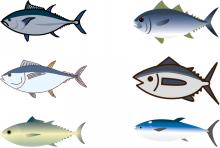 中学受験 社会の地理分野 水産業