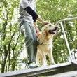 大切な盲導犬を夏の暑…