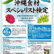 第16回沖縄食材スペ…