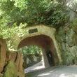 京都に遊ぶ 其の七