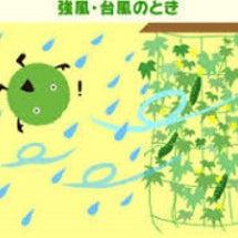 日本に台風接近!!福…