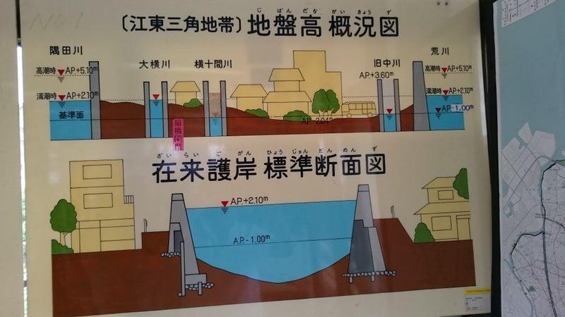 江東区の川の水位