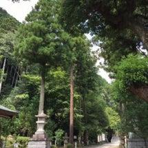 高麗神社(こまじんじ…