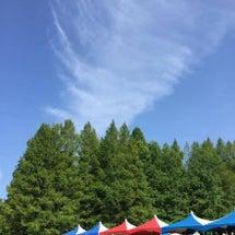金沢森林フェスタ♪
