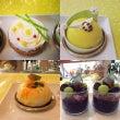 新作ケーキ4品☺️