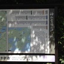 徳島交流会