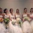Wedding sh…