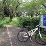 真夏の昭和記念サイク…