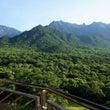 世界自然遺産の屋久島…