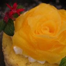 マンゴーの花