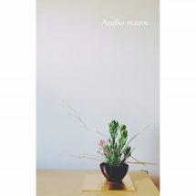 8月の生け花