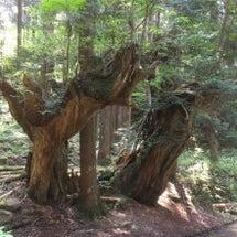 21世紀の森公園