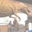 福井県立恐竜博物館へ…