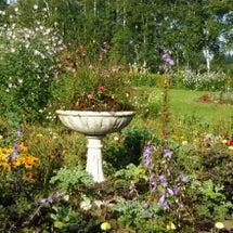 帯広 紫竹ガーデン …