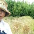 【作業事例90】「草…