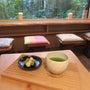 うれしの茶と嬉野温泉