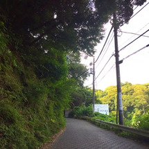 ぶらり鎌倉1人旅 3